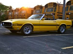 Shelby GT350 Convertible, 1969 год